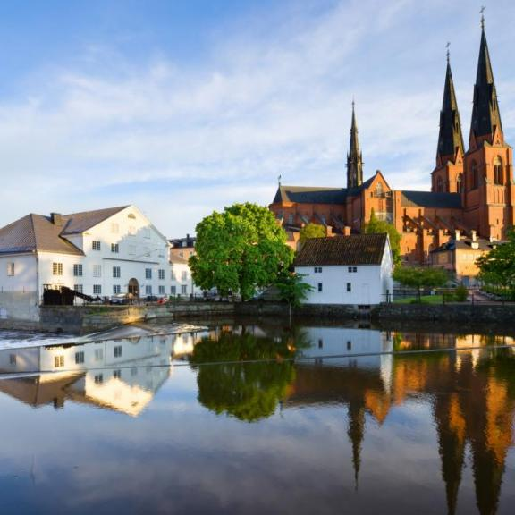 Uppsala miljökonsult med entreprenörssjäl